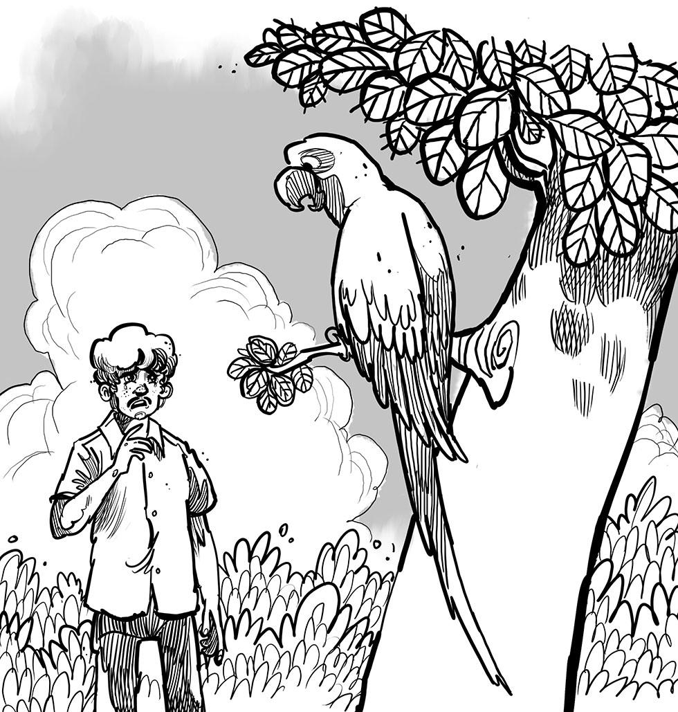 সাত রঙের পাখি অমর মিত্র